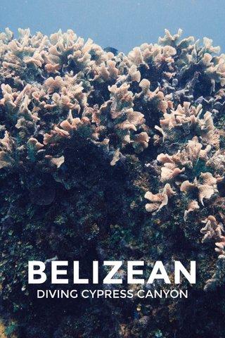BELIZEAN DIVING CYPRESS CANYON