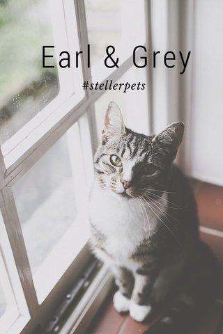 Earl & Grey #stellerpets