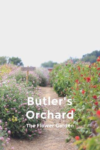 Butler's Orchard The Flower Garden
