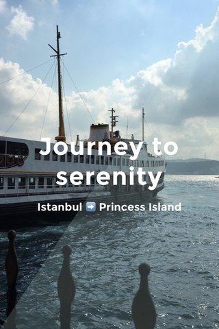 Journey to serenity Istanbul ➡️ Princess Island