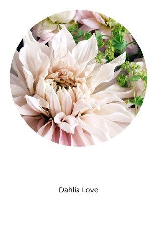 Dahlia Love