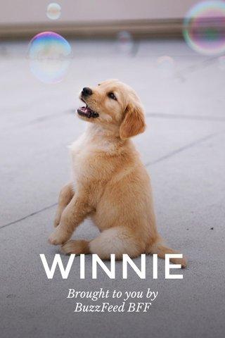 WINNIE Brought to you by BuzzFeed BFF