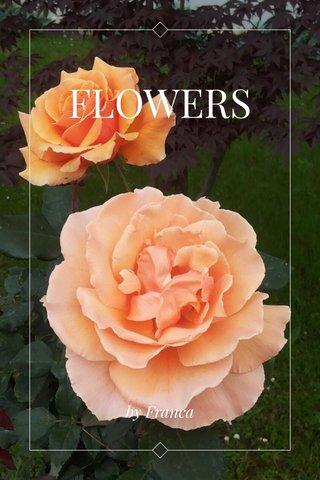 FLOWERS by Franca