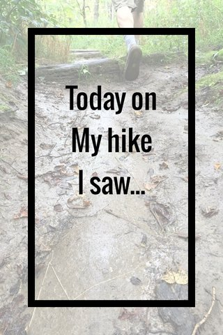 Today on My hike I saw...