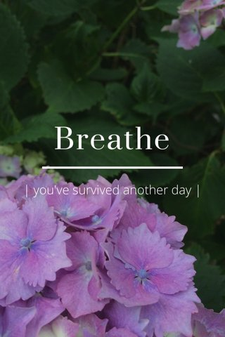 Breathe | you've survived another day |