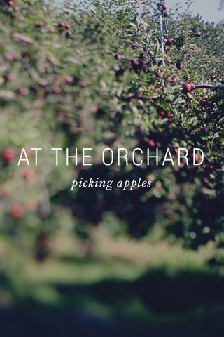 AT THE ORCHARD picking apples