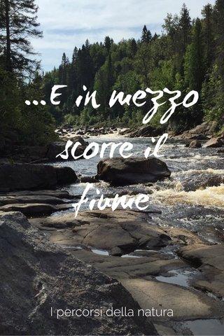 ...E in mezzo scorre il fiume I percorsi della natura
