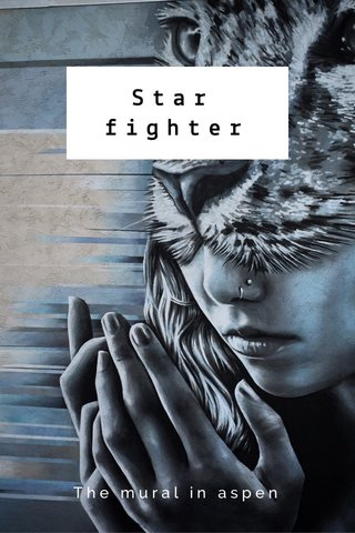 Star fighter The mural in aspen