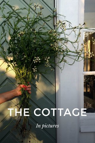 THE COTTAGE In pictures