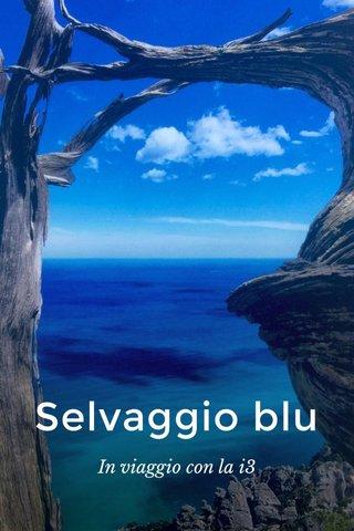 Selvaggio blu In viaggio con la i3