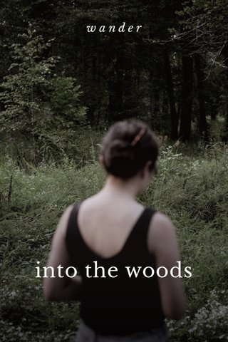 into the woods wander