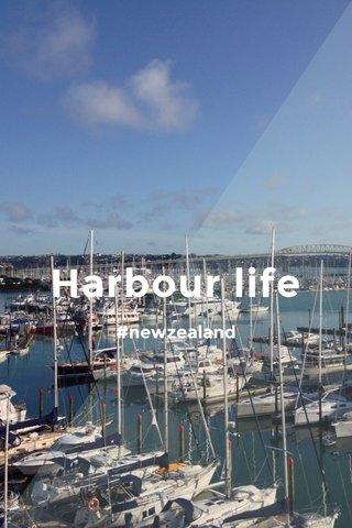 Harbour life #newzealand
