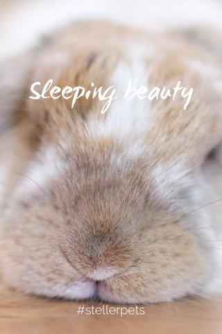 Sleeping beauty #stellerpets