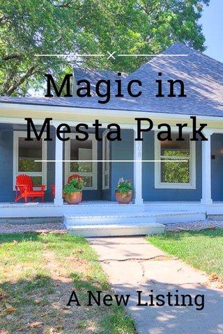 Magic in Mesta Park A New Listing