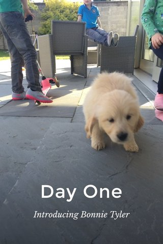 Day One Introducing Bonnie Tyler