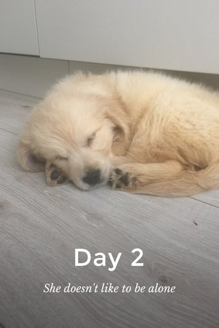 Day 2 She doesn't like to be alone