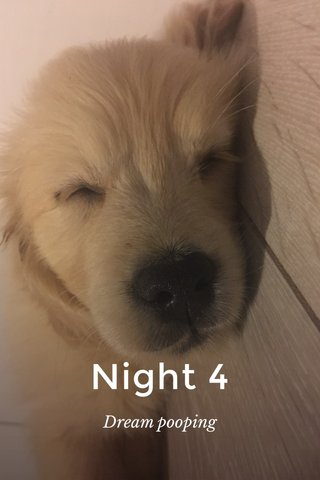 Night 4 Dream pooping