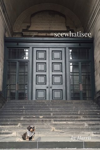 #seewhatisee by Harris
