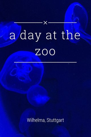 a day at the zoo Wilhelma, Stuttgart