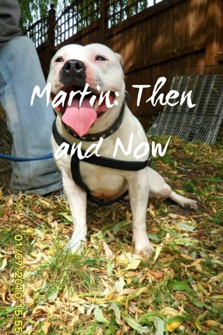 Martin: Then and Now