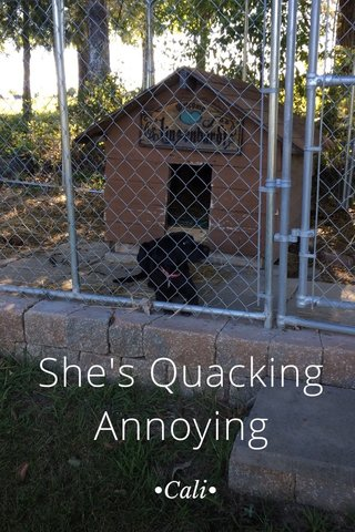 She's Quacking Annoying •Cali•