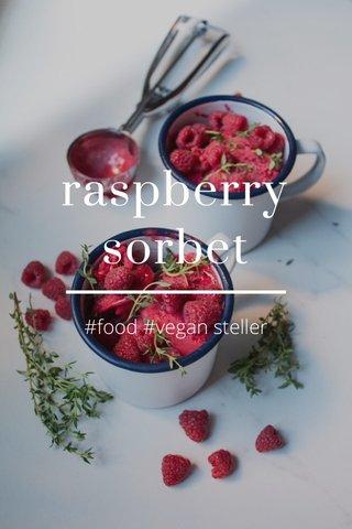 raspberry sorbet #food #vegan steller