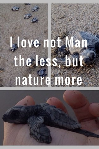 I love not Man the less, but nature more