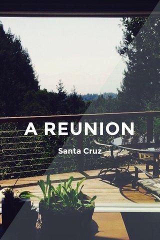 A REUNION Santa Cruz
