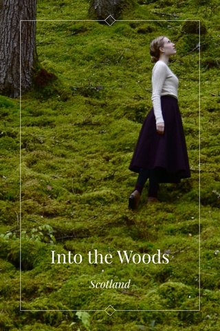 Into the Woods Scotland