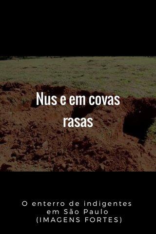 Nus e em covas rasas O enterro de indigentes em São Paulo (IMAGENS FORTES)