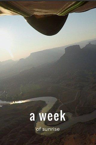 a week of sunrise