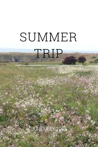 SUMMER TRIP JUNE/JULY 2015
