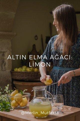 ALTIN ELMA AĞACI: LİMON @Merlin_Mutfakta