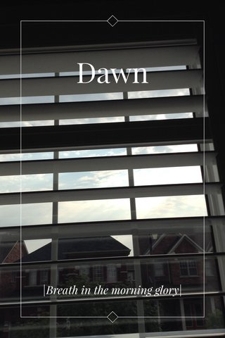 Dawn  Breath in the morning glory 
