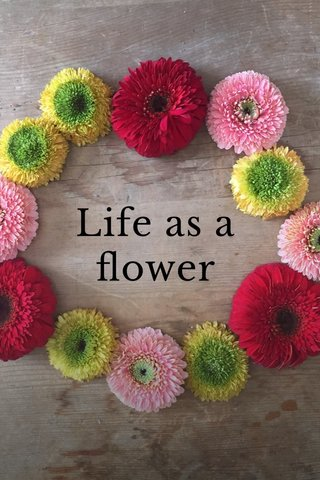 Life as a flower