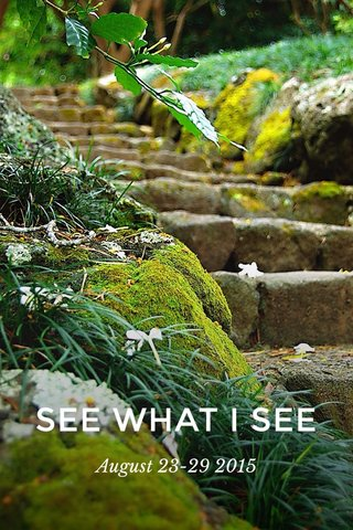 SEE WHAT I SEE August 23-29 2015
