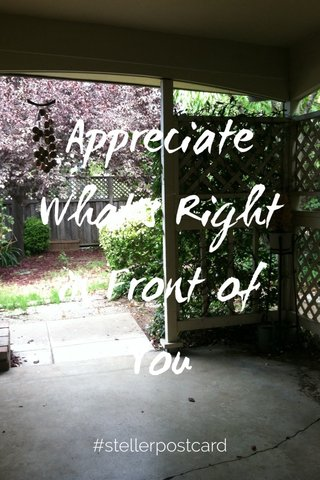 Appreciate What's Right in Front of You #stellerpostcard