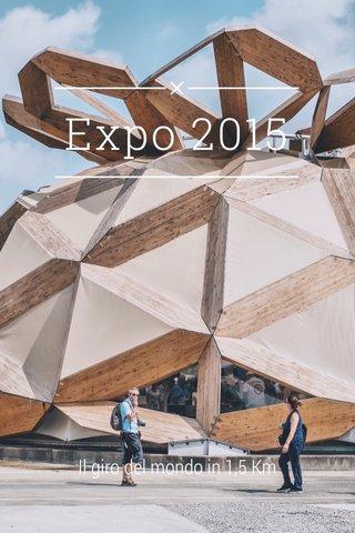 Expo 2015 Il giro del mondo in 1,5 Km