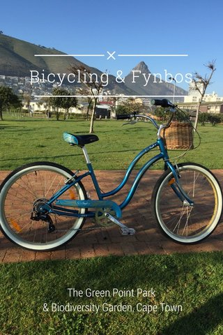 Bicycling & Fynbos The Green Point Park & Biodiversity Garden, Cape Town