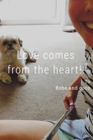 Love comes from the heart!! To Bobo and coco