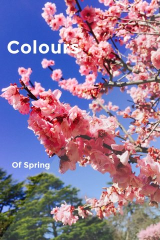 Colours Of Spring