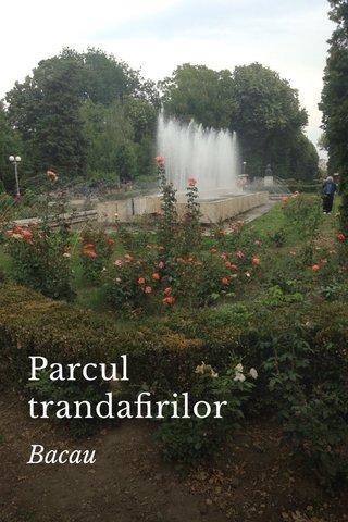 Parcul trandafirilor Bacau
