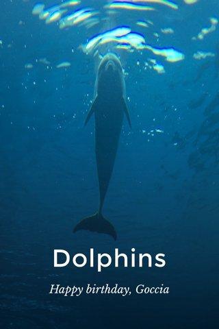 Dolphins Happy birthday, Goccia