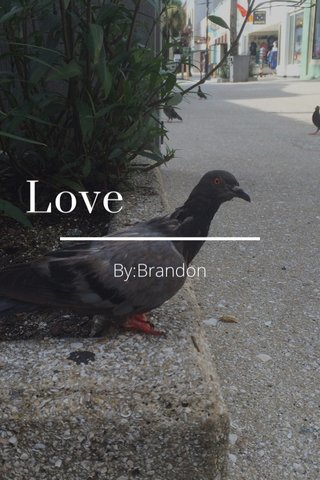 Love By:Brandon