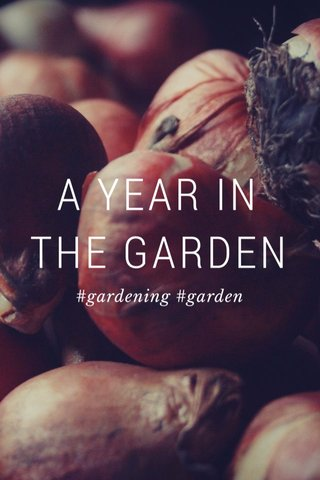 A YEAR IN THE GARDEN #gardening #garden