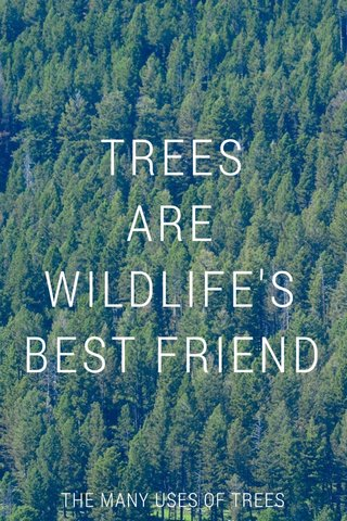 TREES ARE WILDLIFE'S BEST FRIEND THE MANY USES OF TREES