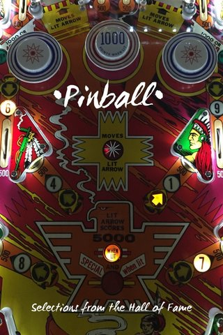 •Pinball• Selections from the Hall of Fame