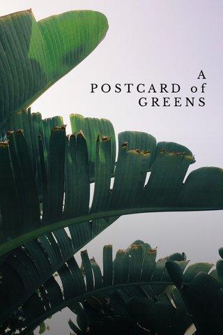 greens A P O S T C A R D o f G R E E N S