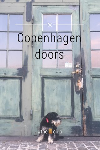 Copenhagen doors #the🚪club