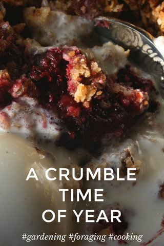 A CRUMBLE TIME OF YEAR #gardening #foraging #cooking